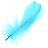 "Feathers Goose 5-7"" Turquoise"